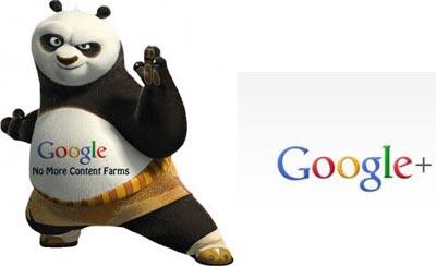 El nuevo algoritmo de Google y Google plus