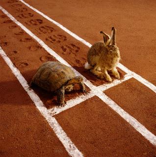 8 consejos para mejorar la velocidad de carga de un blog