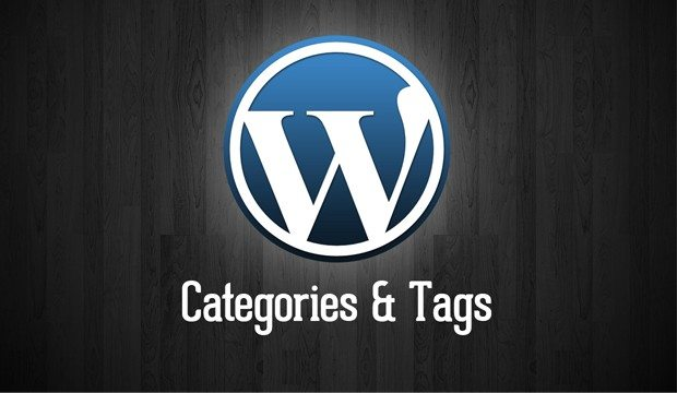categorias y tags para wordpress