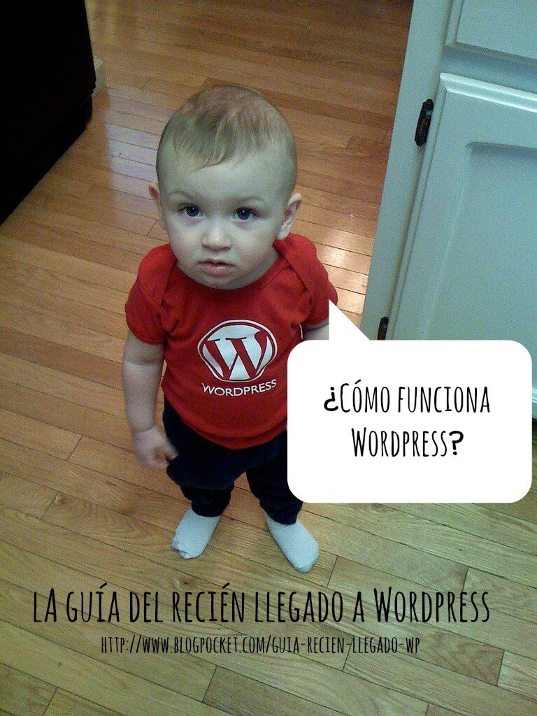 como funciona wordpress