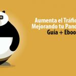 Google Panda a Examen ¿Pasará la prueba tu página web?