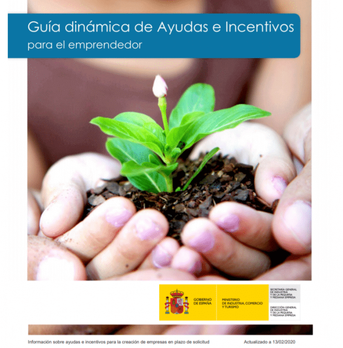 Guia de ayudas para crear empresas en España